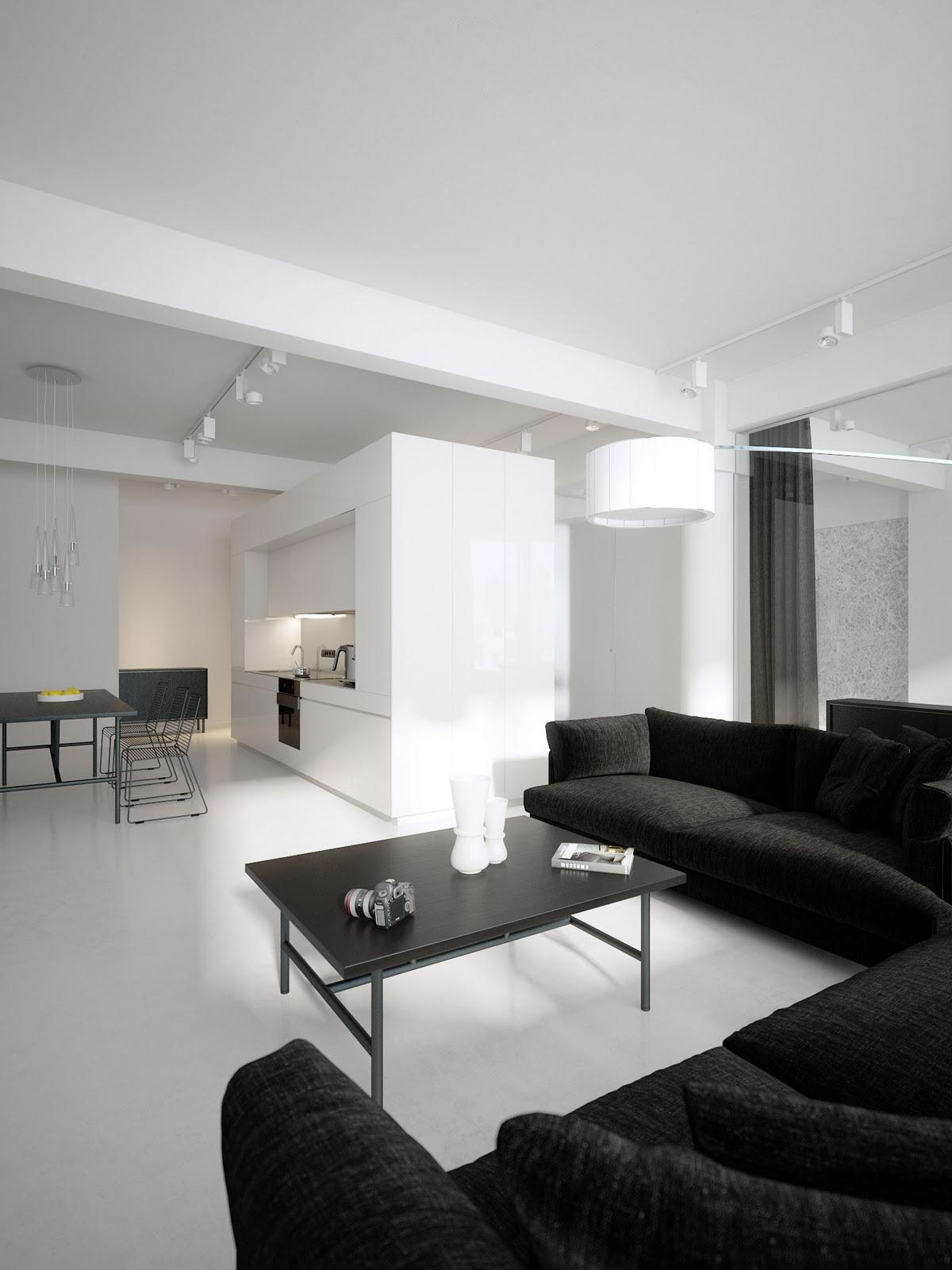 modern-minimalist-black-and-white-lofts_modern-minimalist_recycled ...