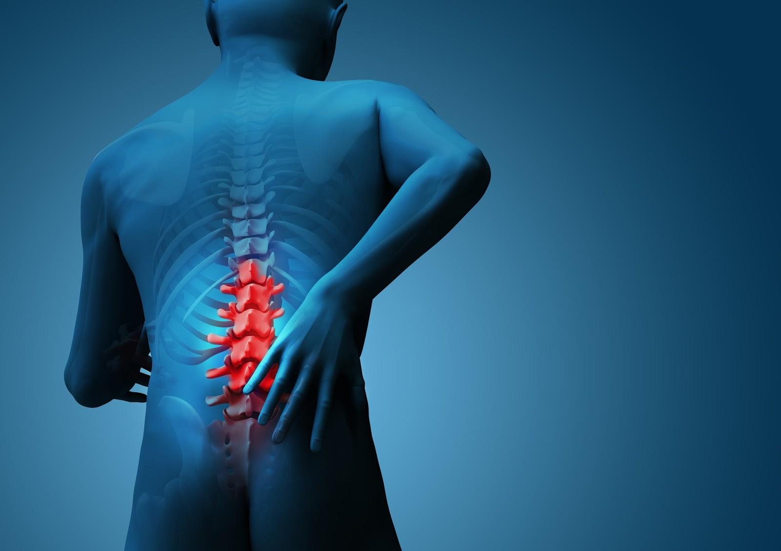 chiropractic (2)[1]