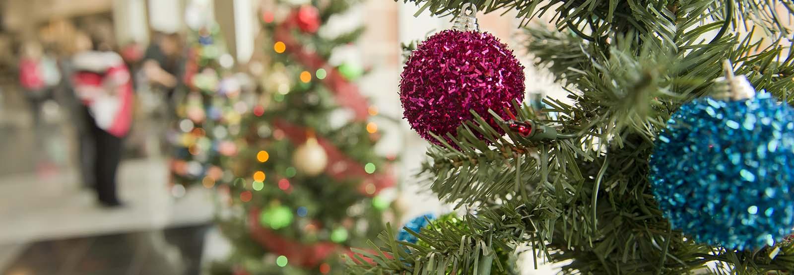 christmas_trees_2017_banner