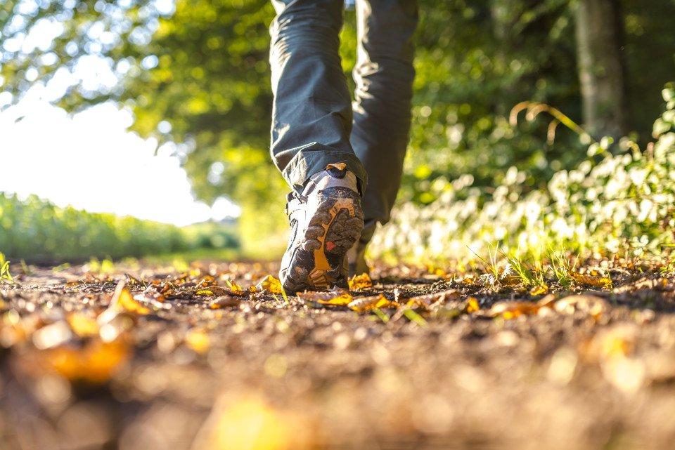 Το να περπατάς στη φύση, γαληνεύει την ψυχή